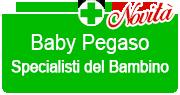 Baby Pegaso